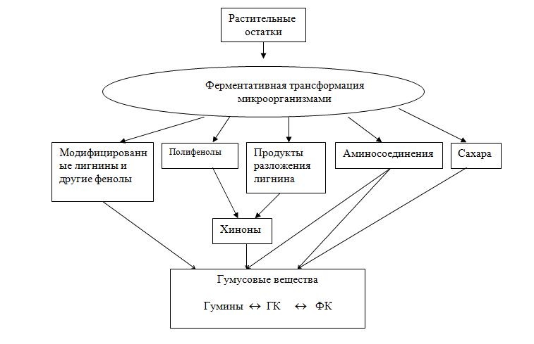 الخصائص العامة للمكونات الرئيسية الثلاثة للدبال